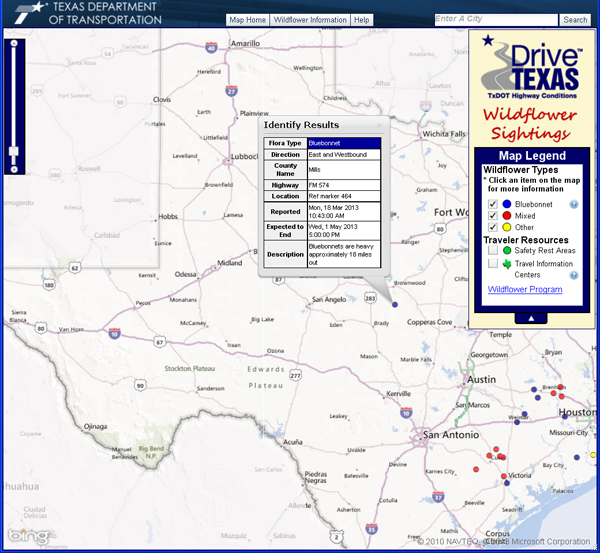 TxDOT's interactive wildflower locator.